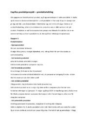 Capillus produktprosjekt – produktutvikling