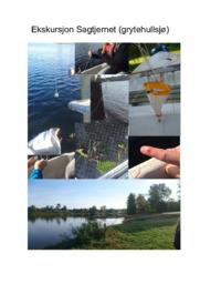 Biologirapport | Ekskursjon Sagtjernet