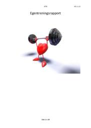 Egentreningsrapport | Gym