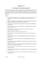 Surhetsgrad i hushodninsprodukt | Rapport naturfag