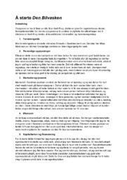 Å starte Den Bilvasken | Samfunnsfag