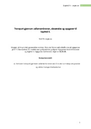 Osmose i rødløk | Biologi Rapport