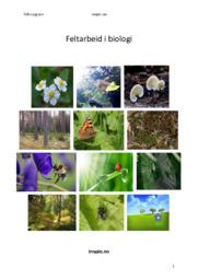 Feltarbeid i biologi | Rapport