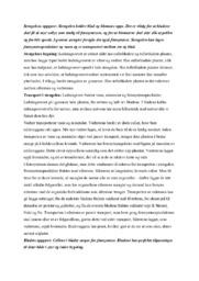 Stengelens oppgave | Biologi