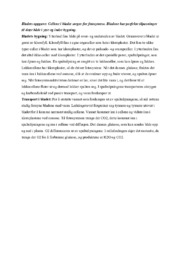 Bladets oppgave | Biologi-drøfteoppgave
