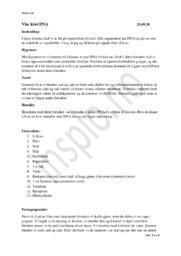 Kiwi DNA   Biologi Rapport