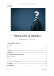Personlighet og selvbilde | Psykologi aflevering