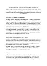 Kulturforskjell, sosialisering og kulturkonflikt