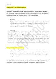 Rituelle dimensjonen & materielle og estetiske | Religion