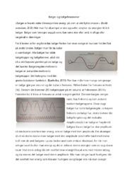 Bølger og bølgefenomener | Norsk oppgave