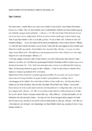 Sjur Gabriel | Romananalyse | 6 i karakter