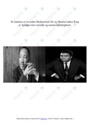 Rasisme og menneskerettigheter | 5 i karakter
