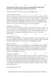 Historiebruk | Oppgave | 6 i karakter