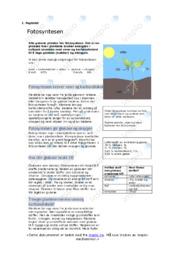 Fotosyntesen | Oppgave | 6 i karakter