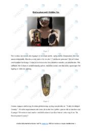 Fagartikkler om resurssbruk | Oppgave | 5 i karakter