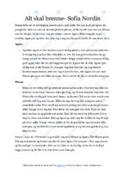 Alt skal brenne | Essay | 5 i karakter