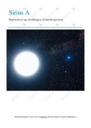 Stjernelivet og utviklingen til hundestjernen | Oppgave | 6 i karakter